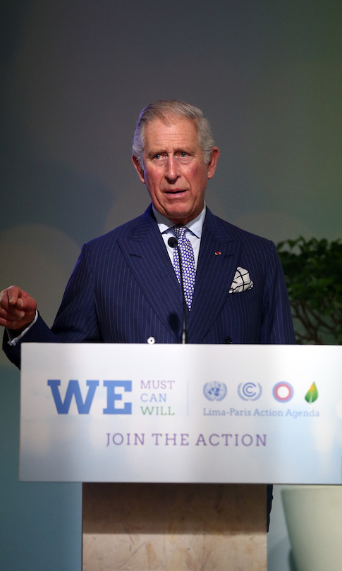 At the Paris summit in December 2011, Prince Charles declared there's no plan B for climate change without forests. 