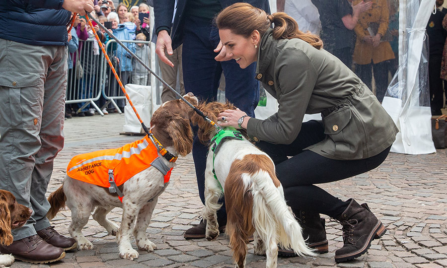 Kate also made some new furry friends!