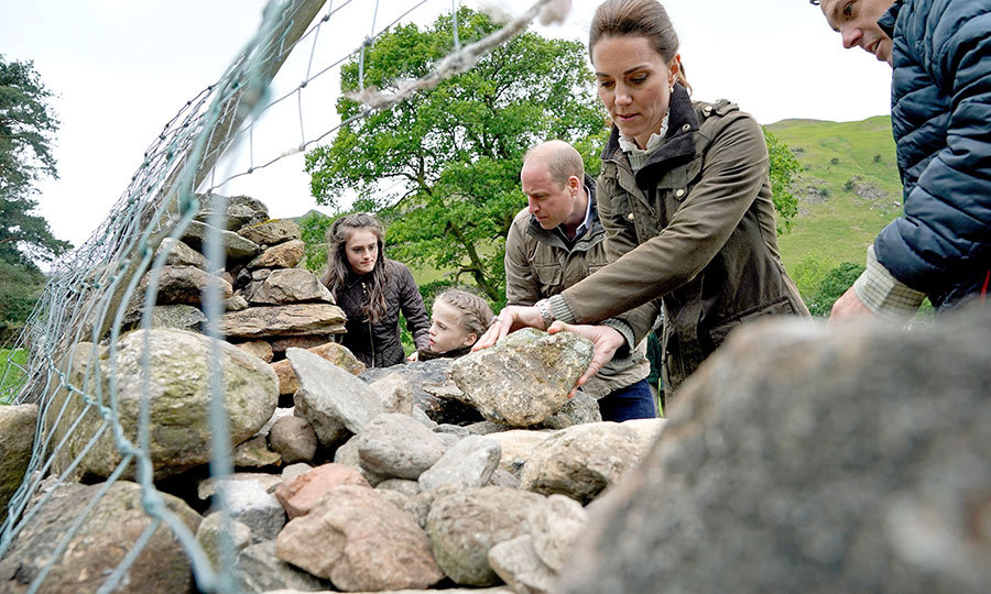 The couple also helped repair a dry stone wall on the farm.
