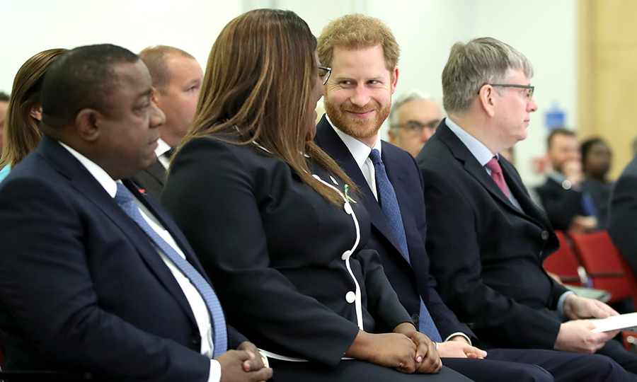 Prince Harry showed off his winning charm as he chatted with a woman at the event.