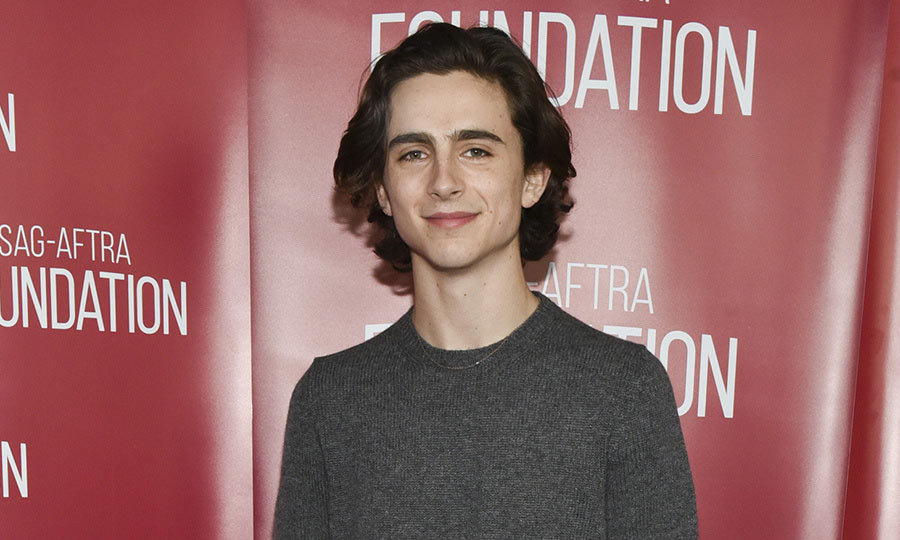 <h2>Timothée Chalamet</h2>
