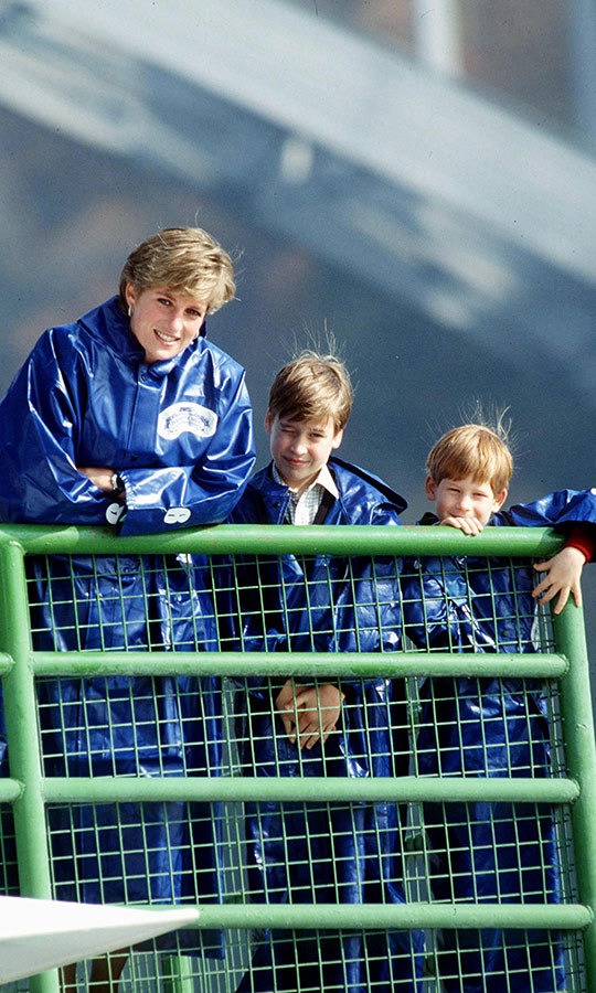 On the same day, Diana took both William and Harry out on the Maid on the Mist, and they got to get up close and personal with the Falls!