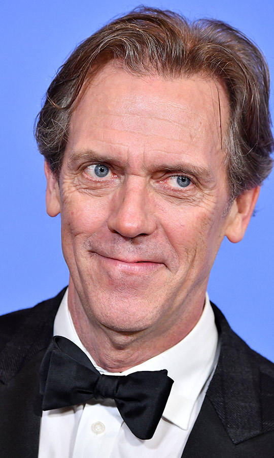 <h2>Hugh Laurie</h2>