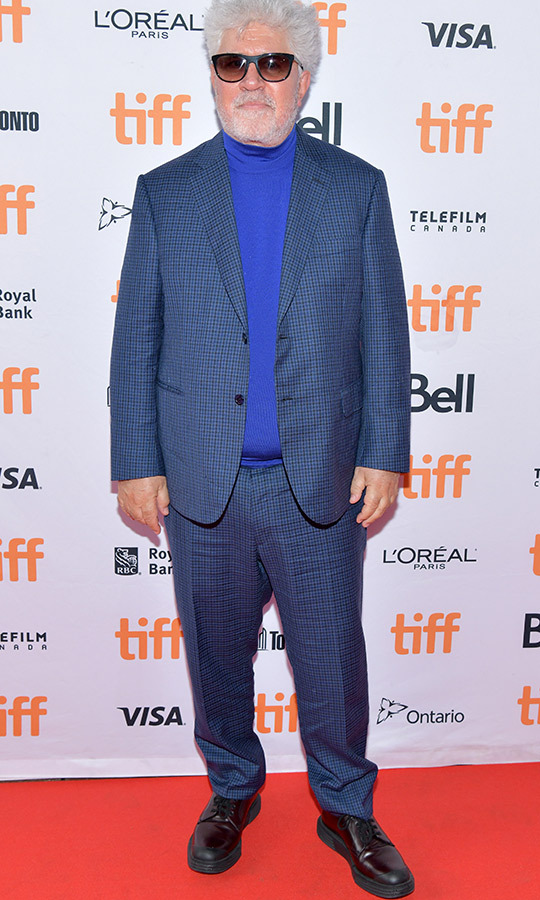 "<strong><a href=""/tags/0/pedro-almodovar"">Pedro Almodovar</a></strong> hit the red carpet for <i>Pain and Glory</i> in a blue checkered suit with a blue turtleneck and black dress shoes.