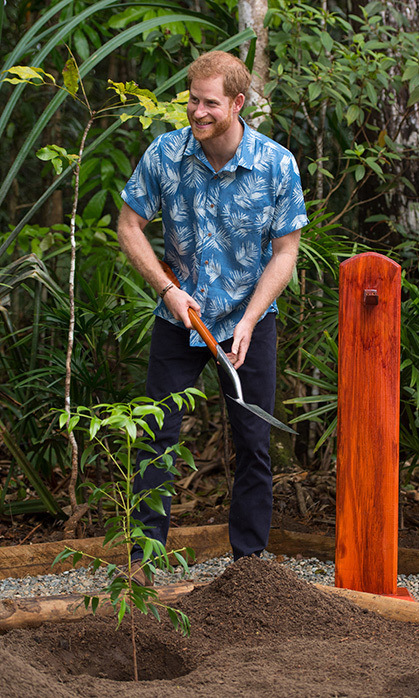 "On Oct. 24, <Strong><a href=""/tags/0/prince-harry"">Harry</a></strong> planted an endangered Dakua tree in Suva, Fiji, using the same spade his grandmother, <Strong><a href=""/tags/0/queen-elizabeth-ii"">the Queen</a></strong>, used while there in 1953! 