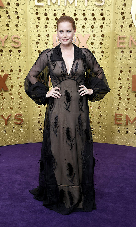 "<strong><a href=""/tags/0/amy-adams"">Amy Adams</a></strong> chose a sheer black dress with floral accents for her Emmys red carpet look.
