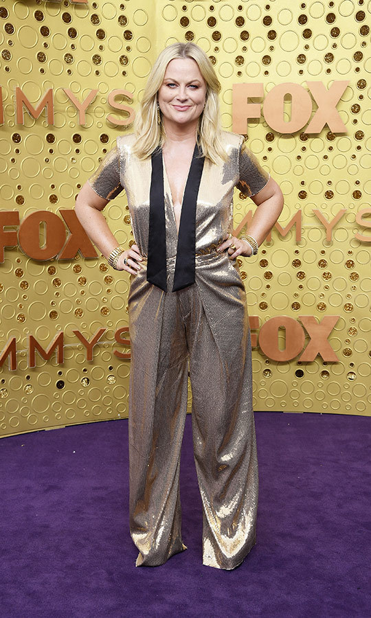 "<strong><a href=""/tags/0/amy-poehler"">Amy Poehler</a></strong> wore a gold jumpsuit.