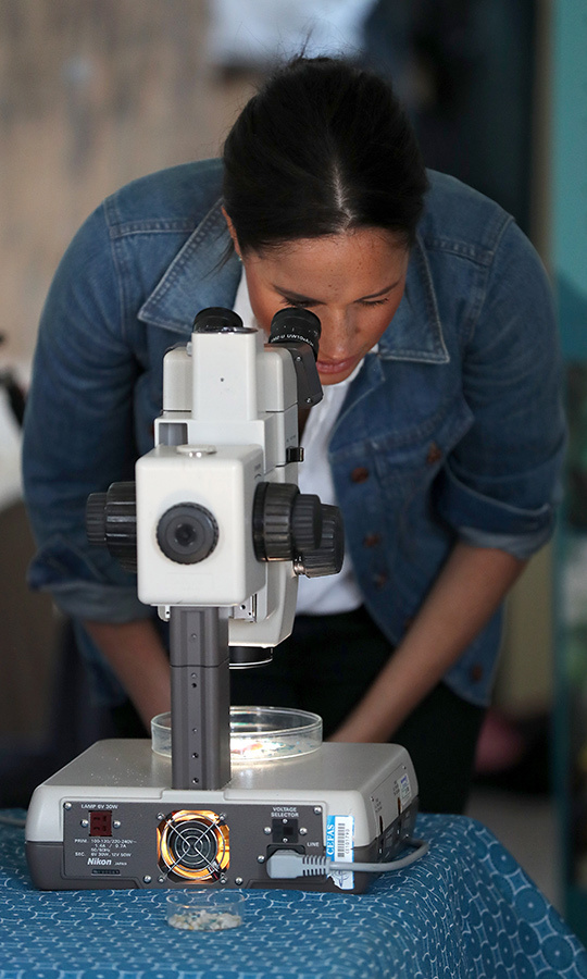 Meghan looked through a microscope in the kitchen. 