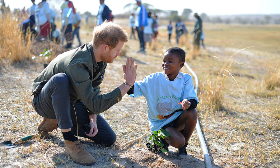 <h2>DAY FOUR: KASANE, BOTSWANA</h2>