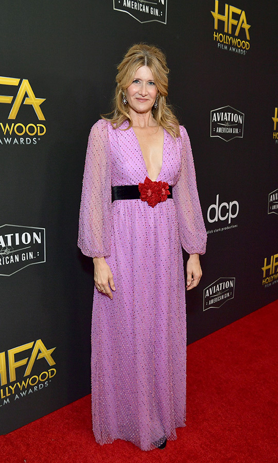 "<strong><a href=""/tags/0/laura-dern"">Laura Dern</a></strong> looked stunning in a unique pink sequinned dress by <strong>Markarian</strong> with a black and red belt. she accepted the Hollywood Supporting Actress Award for her story in <i>Marriage Story</i>. 