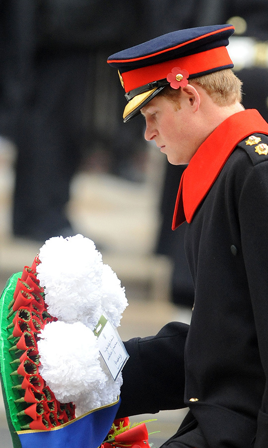 Prince Harry places a wreath at The Cenotaph in 2009.