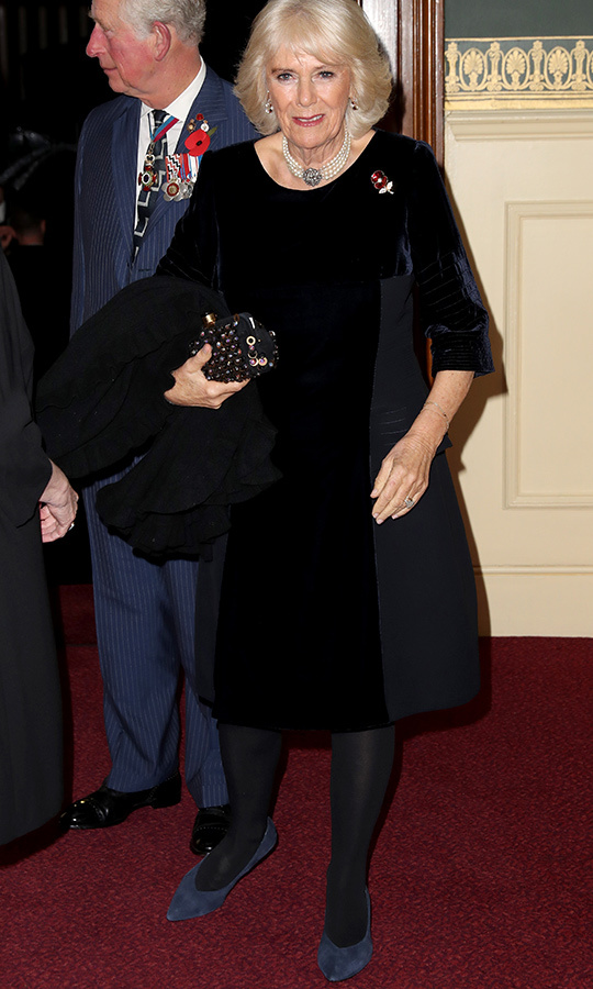 "<strong><a href=""/tags/0/camilla-parker-bowles"">Duchess Camilla</a></strong> arrived in a beautiful black velvet dress. She wore a special poppy brooch. 