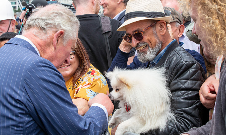 Charles also made another canine friend!