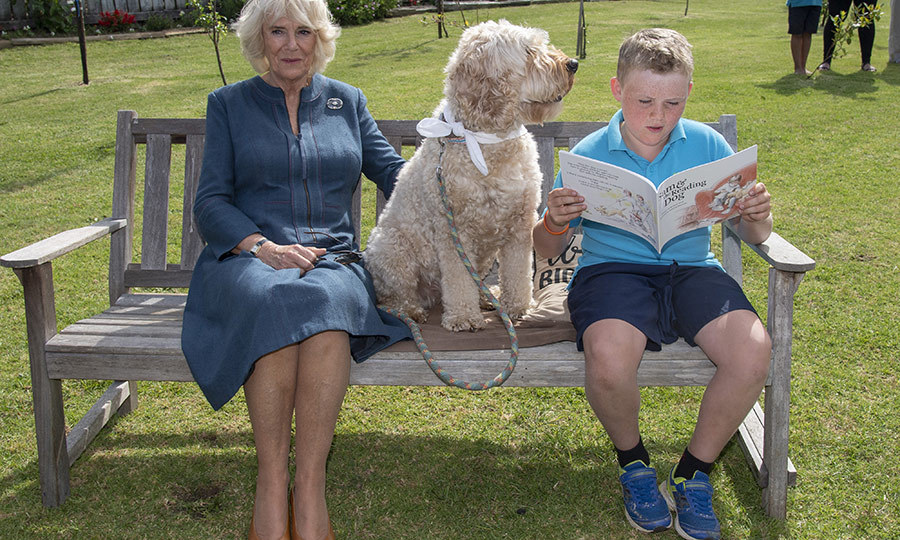 While Charles was at the fire station, Camilla stepped out to Kerikeri Primary School in Waitangi, where she met with students, including Liam Curtis, who was joined by the school's therapy dog, Meg. 