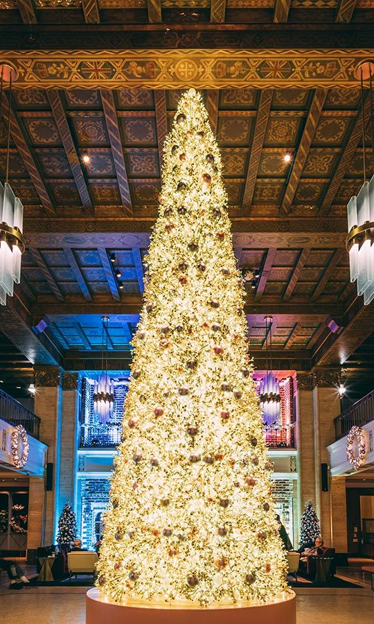 If the two-storey Christmas tree doesn't put you in the festive mood...