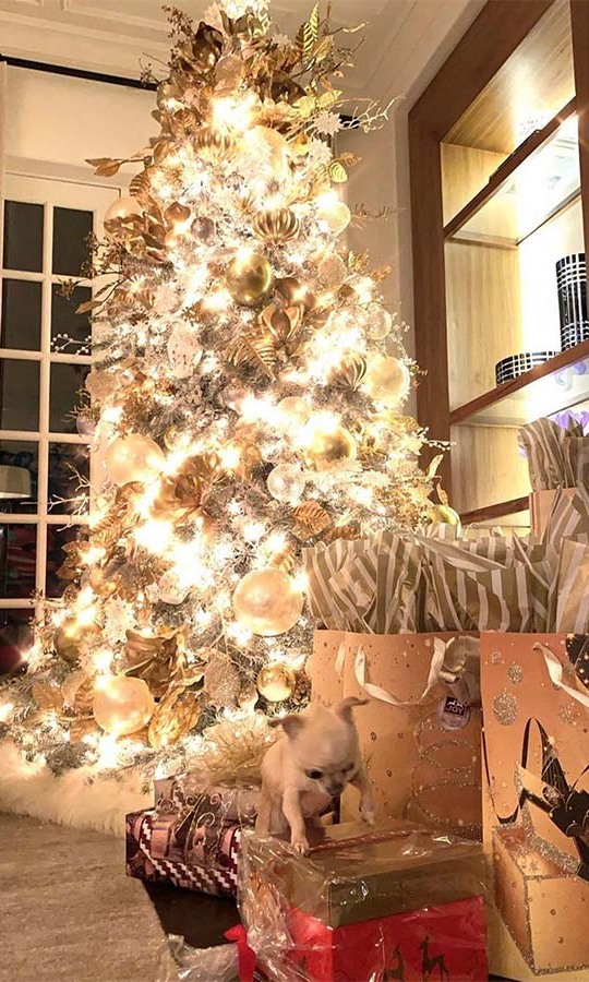 "<h2>Sofia Vergara</h2><p></p><strong><a href=""https://ca.hellomagazine.com/tags/0/sofia-vergara"">Sofia Vergara</a></strong>'s Christmas tree is awe-inspiring, but she was more focused on what was happening around the tree. She captioned the photo, ""Someone is trying to open my Panettone!""<p>Photo: © Instagram/sofiavergara"