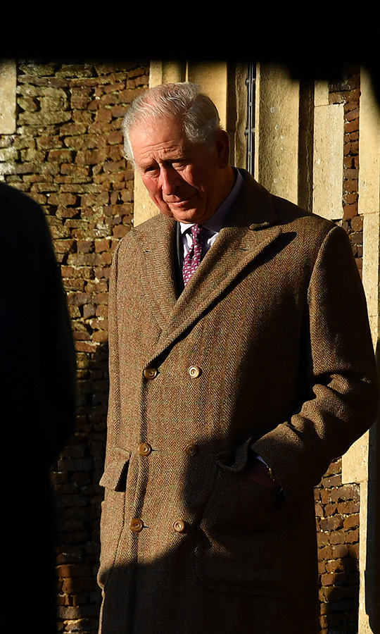 <a href=/tags/0/prince-charles><strong>Prince Charles</a></strong> wore a polka-dot tie and light blue shirt underneath his coat.