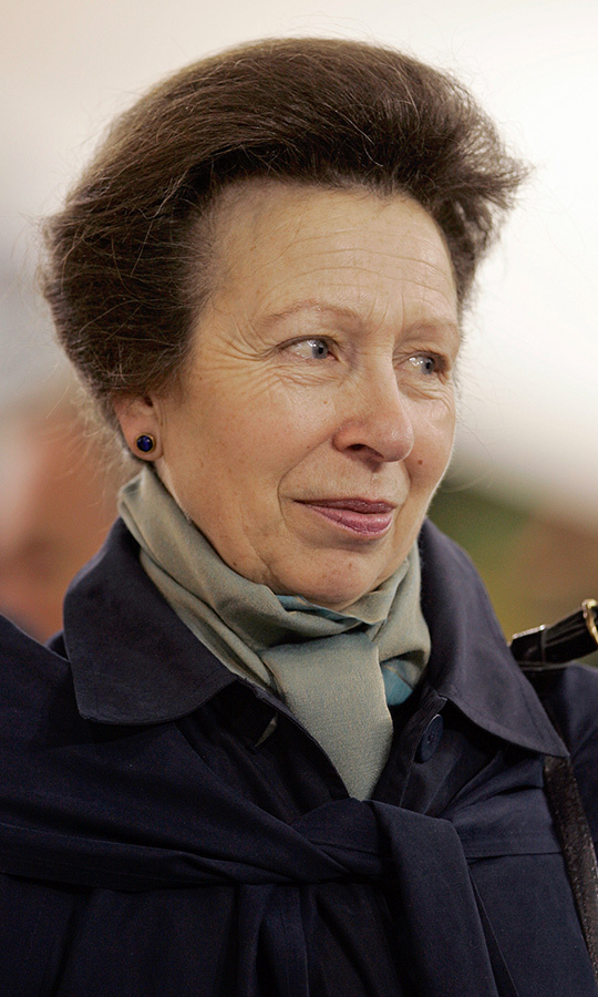 <h2>Princess Anne, 2010</h2>