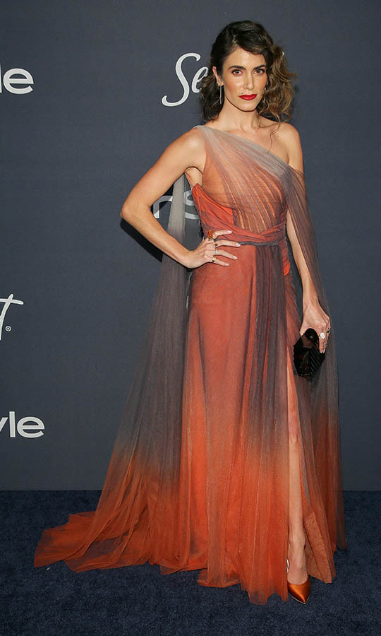 What a striking sunset effect! <a href=/tags/0/nikki-reed><strong>Nikki Reed</strong></a>'s grey and orange tulle gown captured the colours of a fading sun at the 21st Annual Warner Bros. and InStyle Golden Globe after-party. <p> Photo: © Jemal Countess/FilmMagic
