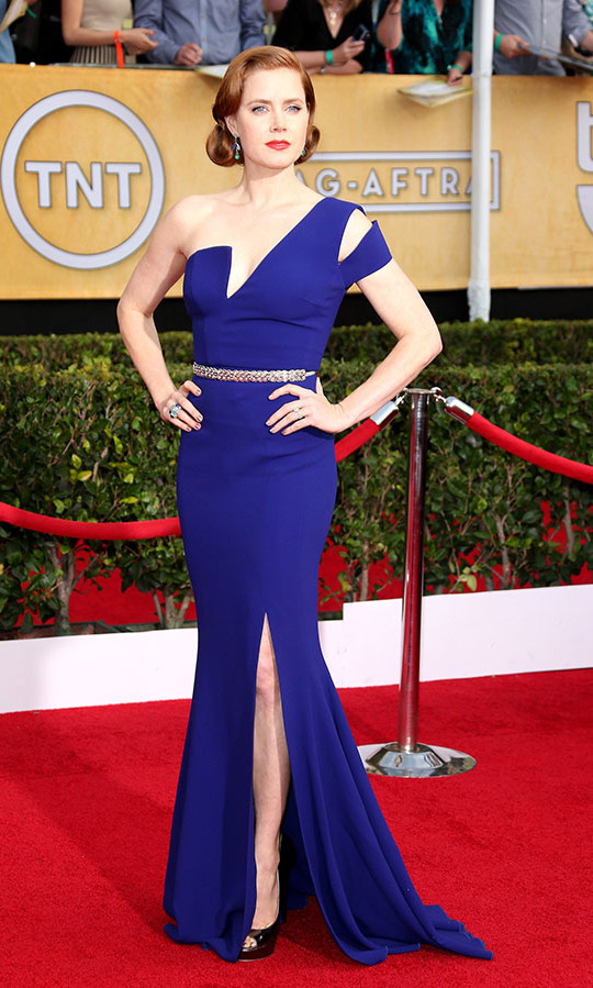 "<h2>Amy Adams, 2014</h2><p><a href=""https://ca.hellomagazine.com/tags/0/amy-adams""><strong>Amy Adams</strong></a> recalled the glamour of Old Hollywood while looking thoroughly modern at the 20th Annual Screen Actors Guild Awards in a cobalt blue <strong>Antonio Berardi</strong> gown. <p>Photo: © Dan MacMedan/WireImage"