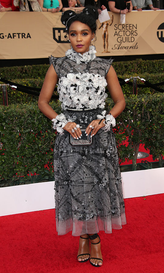 "<h2>Janelle Monae, 2017</h2><p> <a href=""https://ca.hellomagazine.com/tags/0/janelle-monae""><strong>Janelle Monae</strong></a> always makes a style statement. She did in black and white with her <a href=""https://ca.hellomagazine.com/tags/0/chanel""><strong>Chanel</strong></a> dress and floral updo. <p>Photo: © Dan MacMedan/WireImage"
