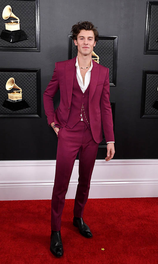 <a href=/tags/0/shawn-mendes><strong>Shawn Mendes</strong></a> showed off his cool style in a slim wine-coloured suit. <p>Photo: &copy; Steve Granitz/WireImage