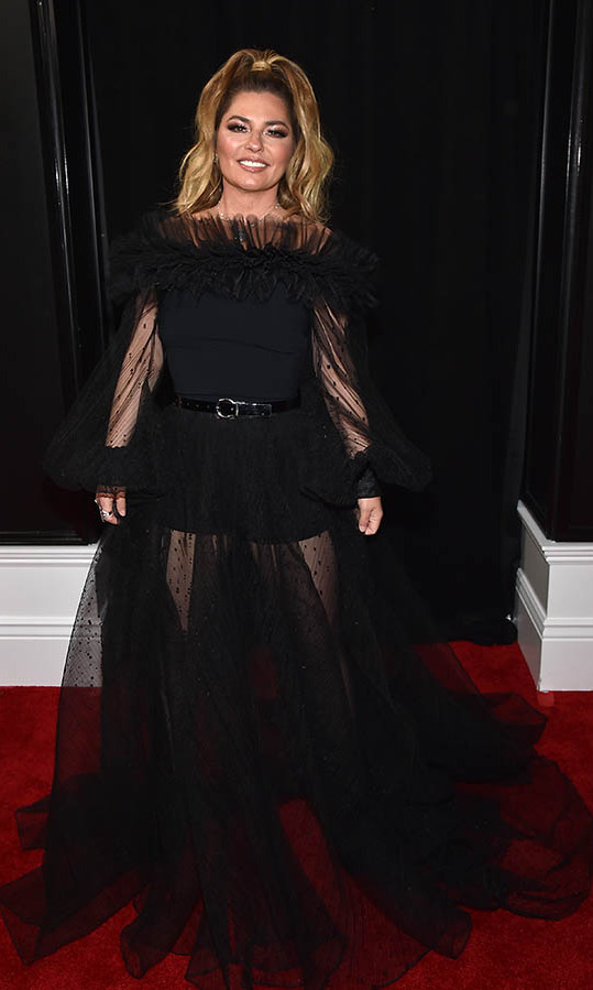Canadian legend <a href=/tags/0/shania-twain><strong>Shania Twain</a></strong> wowed in a dramatic black tulle gown. <p>Photo: &copy; John Shearer/Getty Images for The Recording Academy