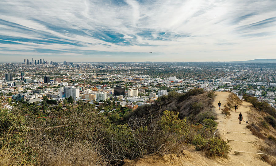 <h2>INDULGE</h2>