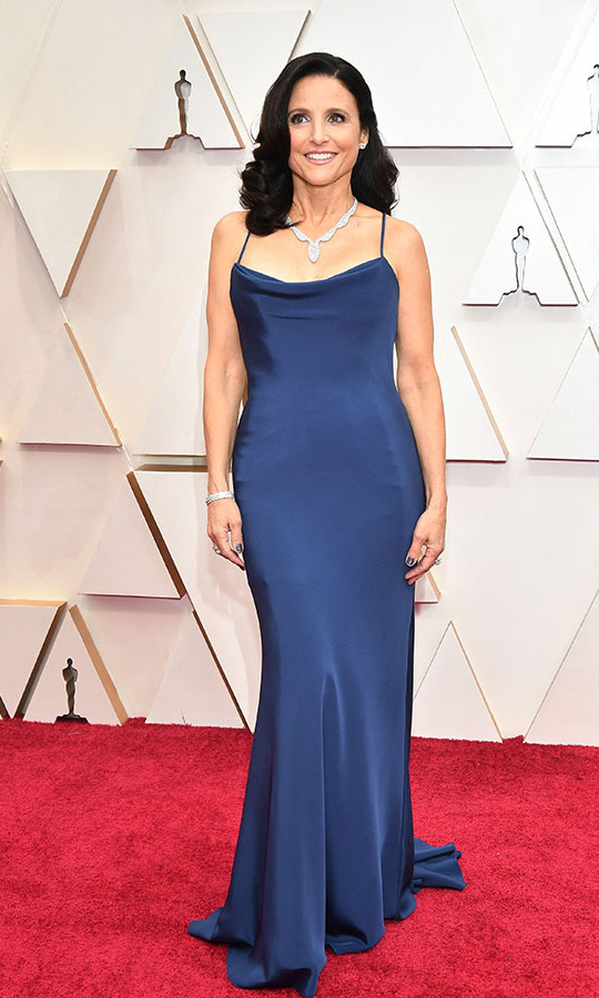 Wow! <a href=/tags/0/julia-louis-dreyfus><strong>Julia Louis-Dreyfus</strong></a> looked effortlessly glam in a slinky navy <a href=/tags/0/vera-wang>Vera Wang</a></strong> gown and statement necklace from <strong><a href=/tags/0/harry-winston>Harry Winston</a></strong>.<p>Photo: &copy; Amy Sussman/Getty Images