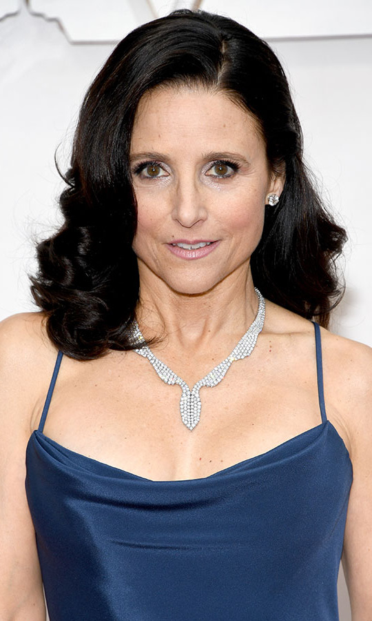<a href=/tags/0/julia-louis-dreyfus><strong>Julia Louis-Dreyfus</strong></a> rounded out her look with a sparkling necklace with wavy design. <p>Photo: &copy; Kevin Mazur/Getty Images