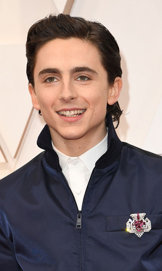 Modern meets vintage! <a href=/tags/0/timothee-chalamet><strong>Timothée Chalamet</strong></a>, from <em>Little Women</em>, rounded out his on-trend look with a vintage <a href=/tags/0/cartier><strong>Cartier</strong></a> ruby and diamond brooch from 1955. <p>Photo: &copy; ROBYN BECK/AFP via Getty Images