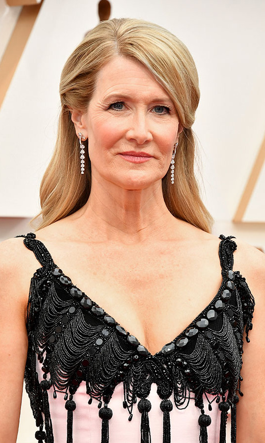 The fringing on Best Supporting Actress winner <a href=/tags/0/laura-dern><strong>Laura Dern</strong></a>'s dress was captivating, but it didn't take away from the beauty of her drop earrings. <p>Photo: &copy; Amy Sussman/Getty Images