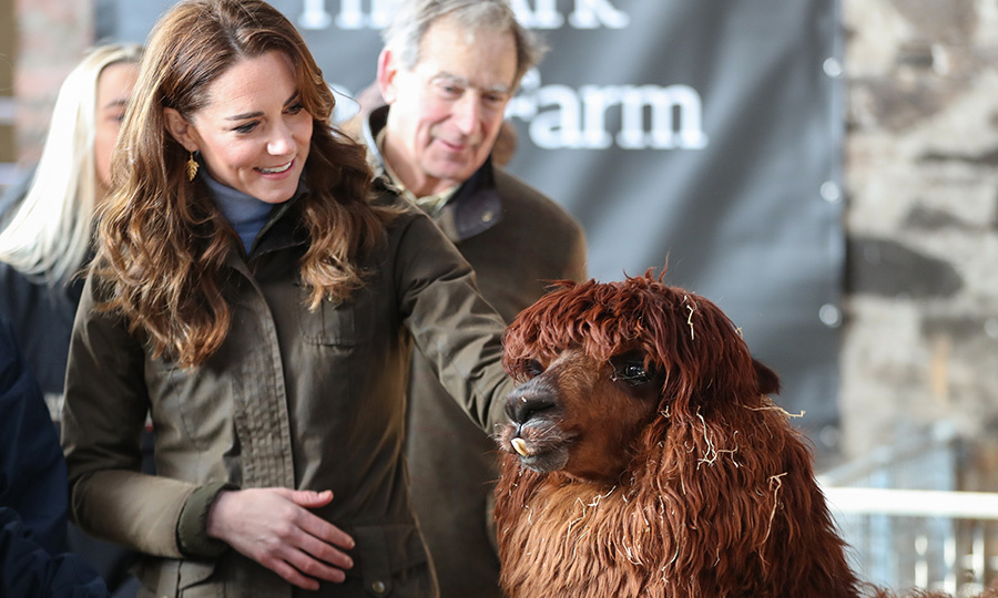 The duchess accompanied the kids on a special trip to meet many of the farm's animals, including this alpaca.