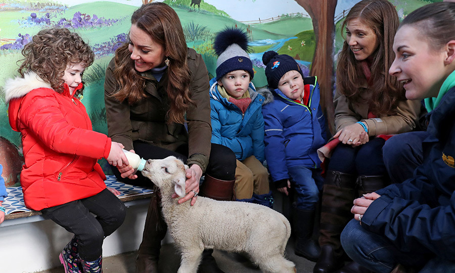 She also helped a little feed this adorable lamb...