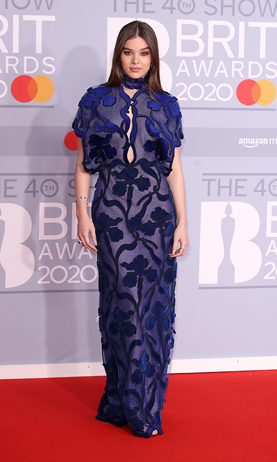 <strong><a href=/tags/0/hailee-steinfeld>Hailee Steinfeld</a></strong> chose a dreamy blue floral gown. 