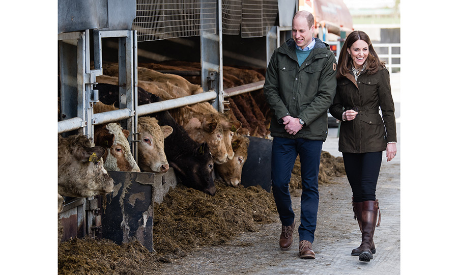 The couple spent time hearing about the research being done at Teagasc Animal & Grassland Research Centre at Grange in County Meath. They also said hello to some cattle!