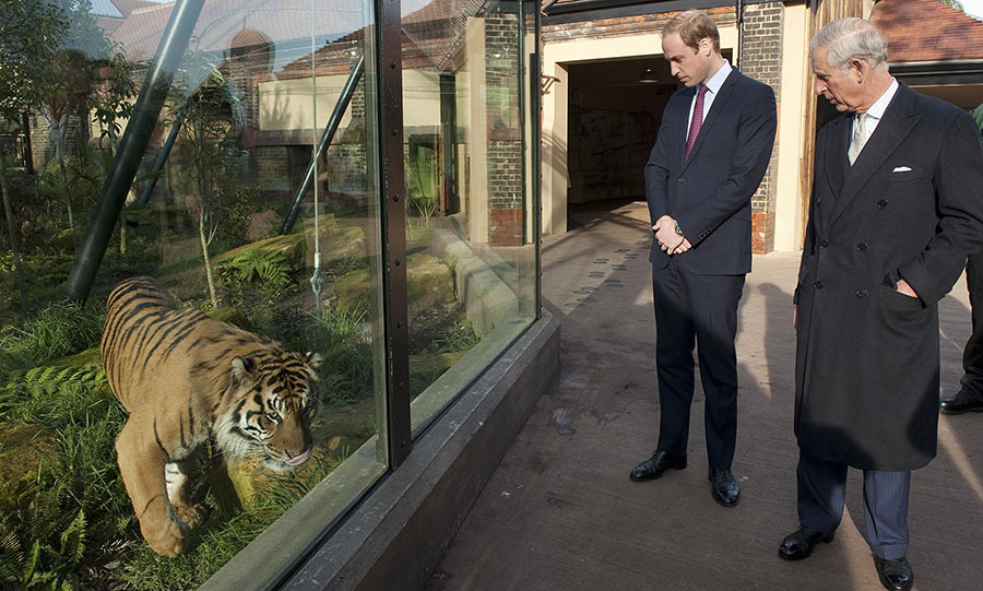 <h2>Prince William and Prince Charles</h2>