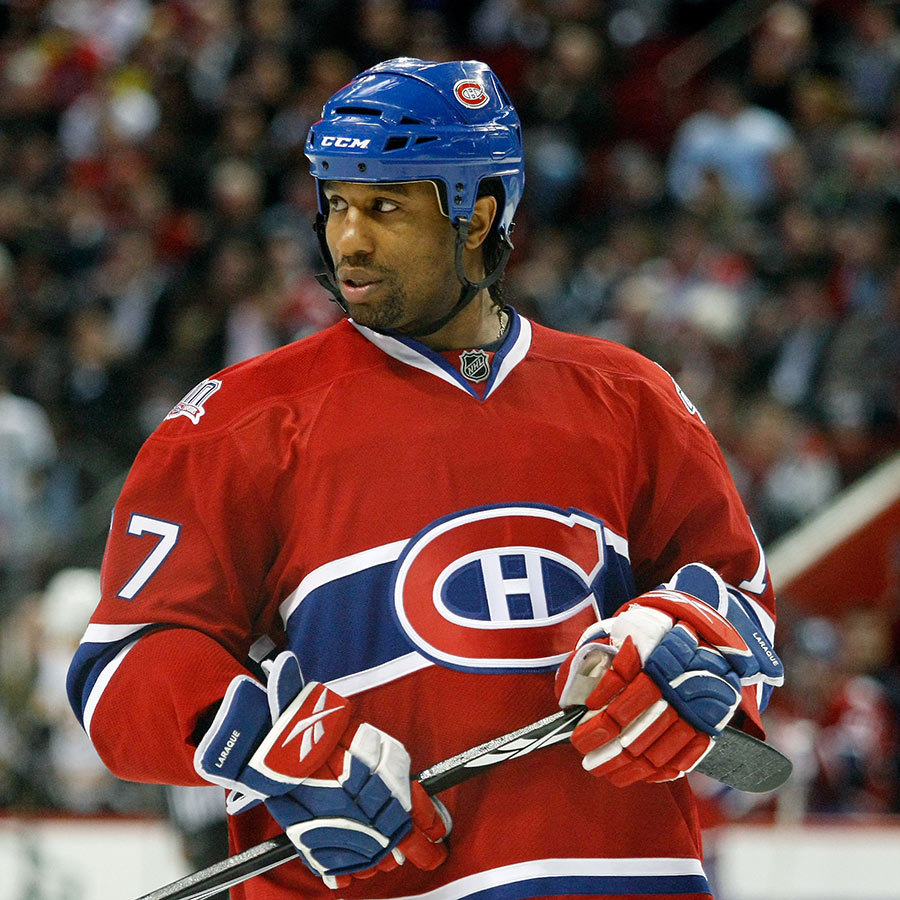 <h2>Georges Laraque</h2>