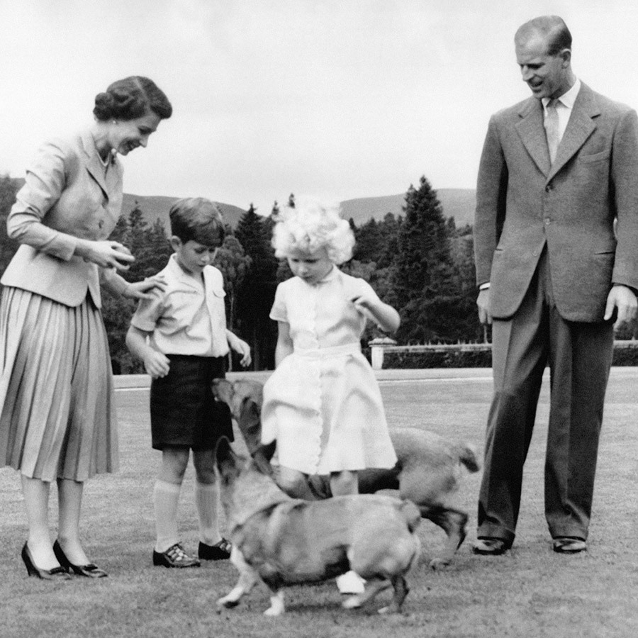 <h2>Princess Anne</h2>