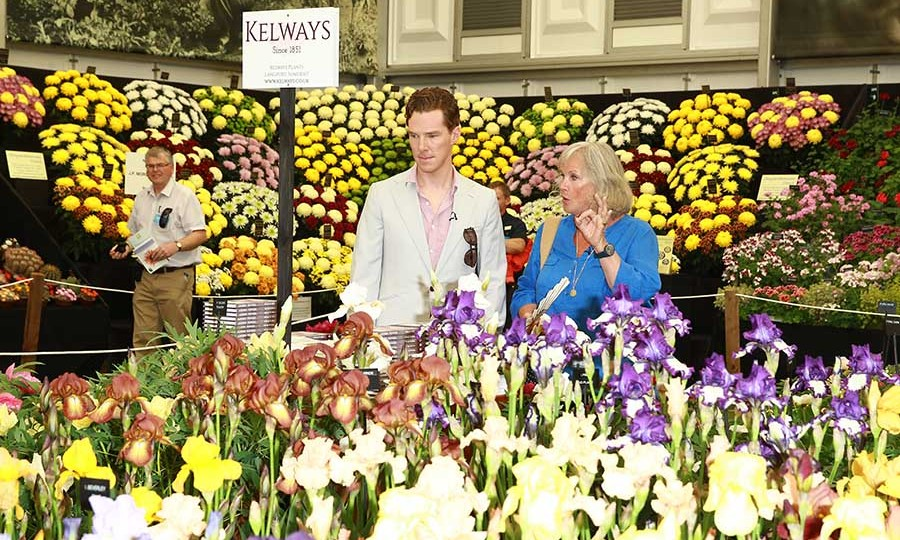<h2>Benedict Cumberbatch, 2014</h2>
