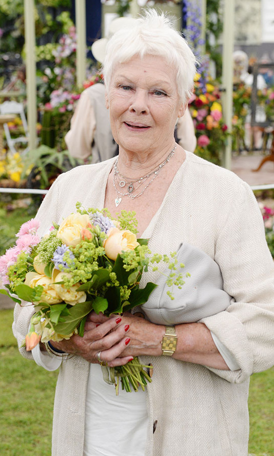 <h2>Judi Dench, 2016</h2>
