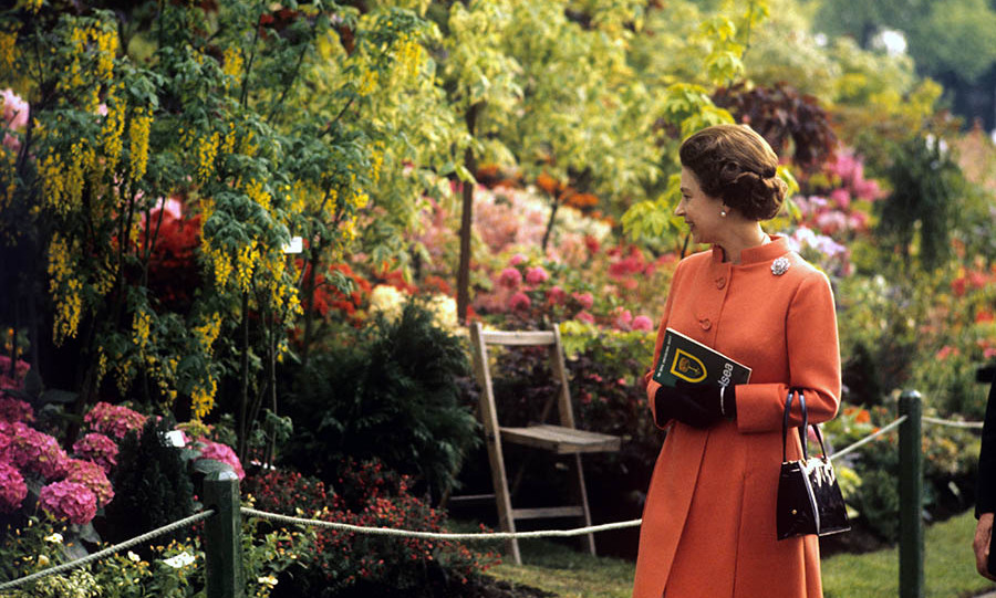 <h2>The Queen, 1971</h2>