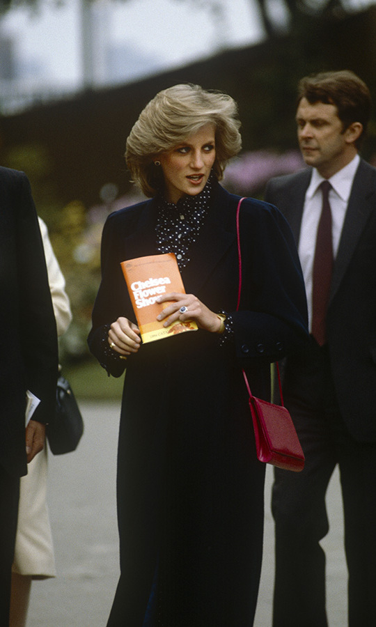 <h2>Princes Diana, 1984</h2>