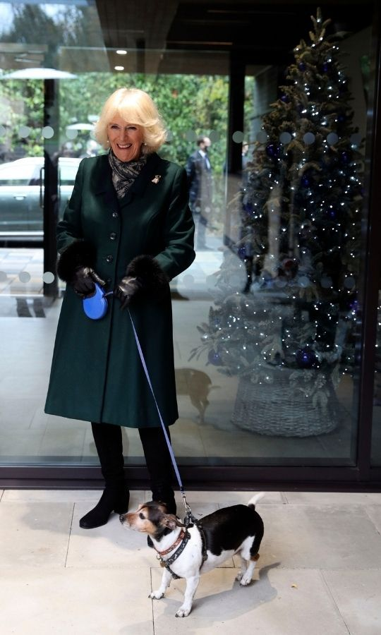 The Duchess of Cornwall's dog was adopted from Battersea Dogs and Cats Home nearly 10 years ago.