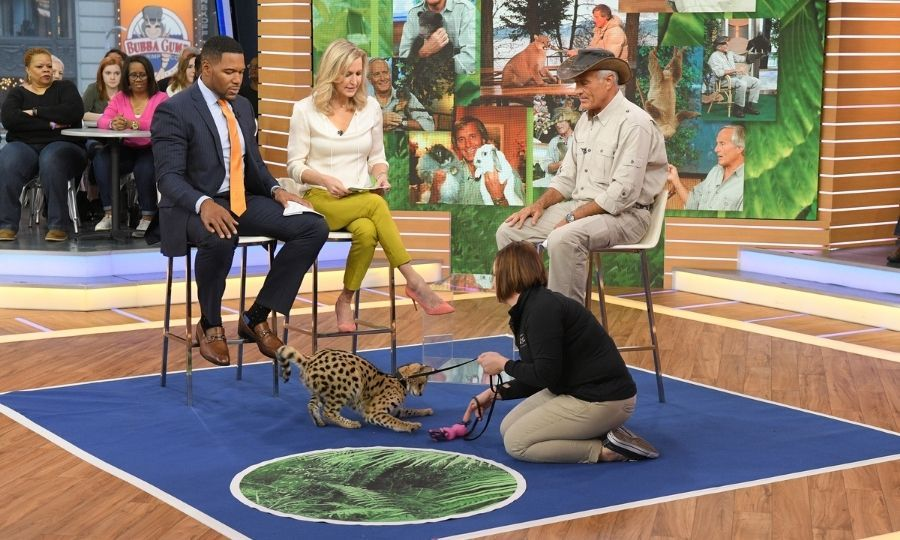 Jack with animals from the Columbus Zoo on Good Morning America in 2017. Photo: © Lorenzo Bevilaqua/Walt Disney Television via Getty Images