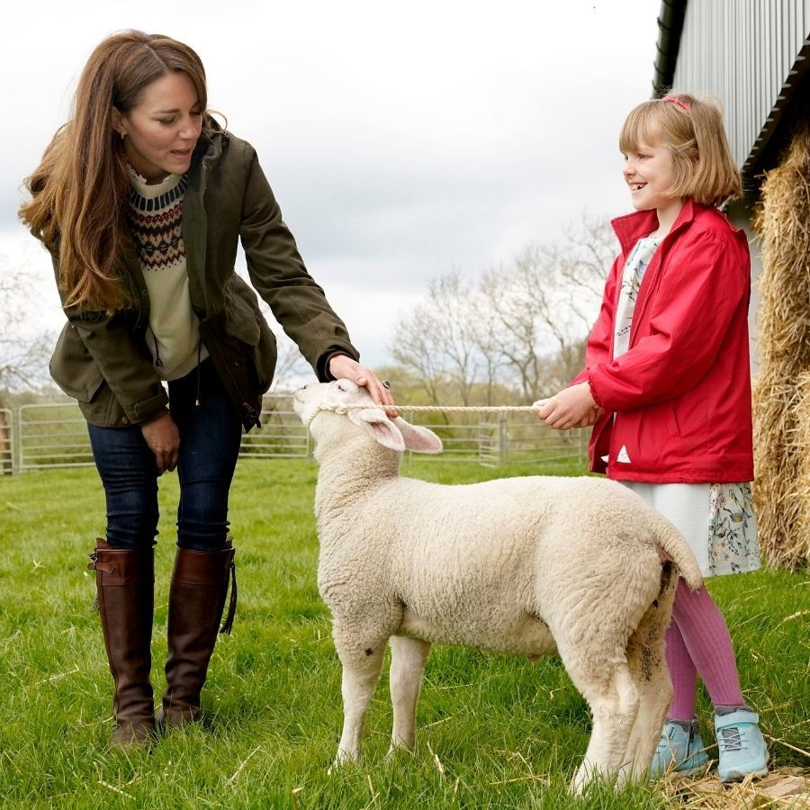 The lamb really loved Kate, and we aren't surprised!
