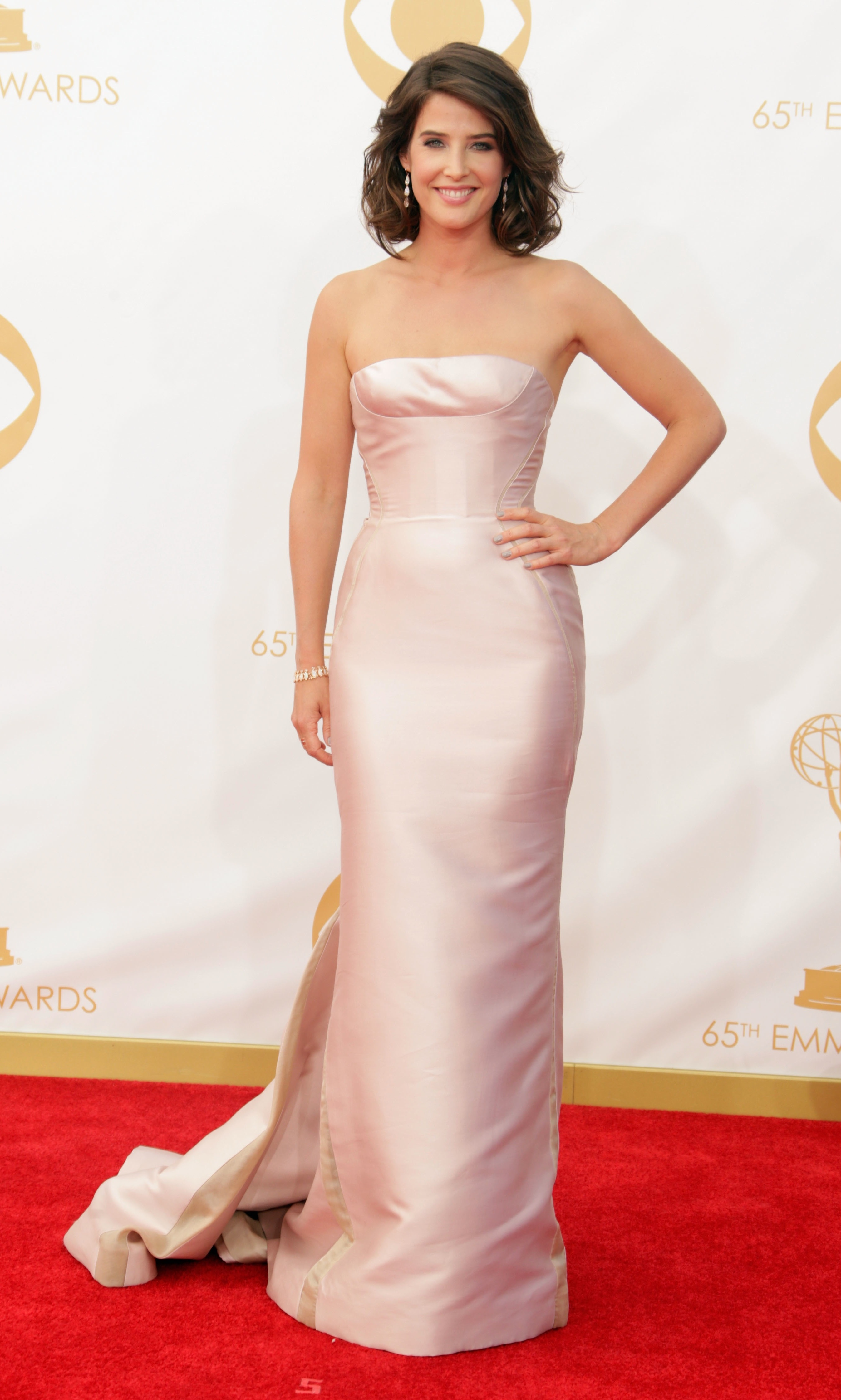 How I Met Your Mother's Cobie Smulders was also in the ranks of the J Mendel beauties, opting for a pale column gown with a train.