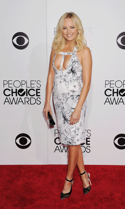Malin Akerman in a Cushnie Et Ochs dress. Photo: © Getty Images