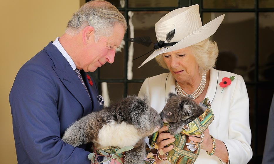 2012: The animal-loving duo held a pair of fuzzy koalas in their arms during a visit Down Under two years ago.