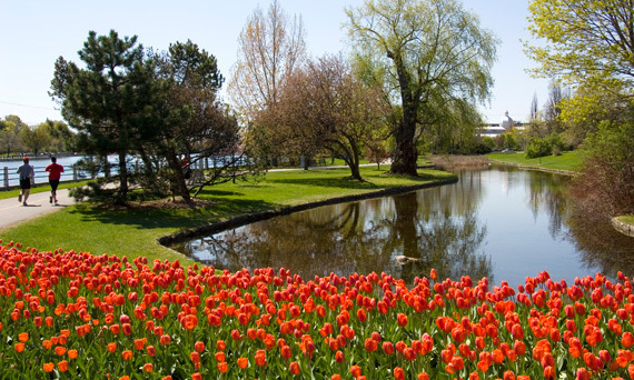 OTTAWA: Sweets and treats are definitely Mother's Day must-dos, but there's something to be said for stopping to smell the flowers. Take mom out for a guided bicycle tour ($20) of Ottawa's Tulip Festival, a 16 km trek that meanders through a breathtaking array of new blooms.